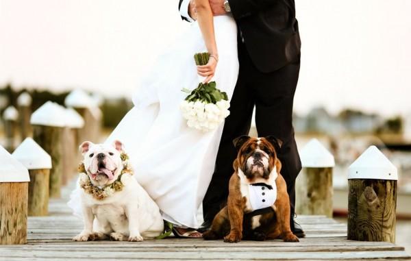Joe Mikos_Mirelle carmichael_Blog Casamento em Búzios_Casamento na Praia_Guia de Fornecedores_foto14