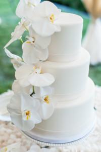 Leila brewster_bolo_blog_casamento em búzios.1