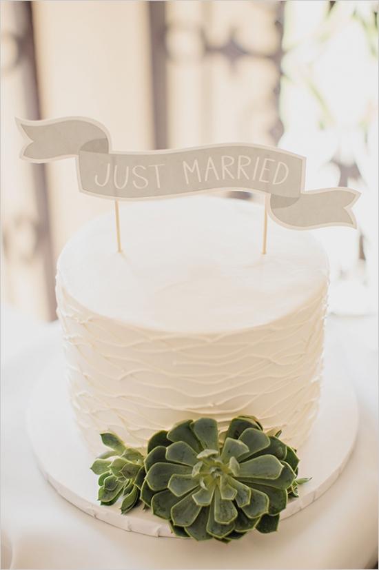 dave richards_bolo_suculentas_casamento_casamento em buzios_blog2